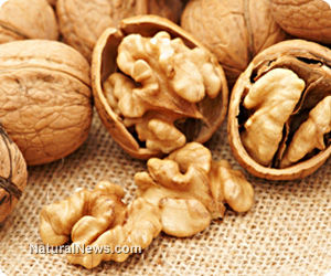 Raw Nuts, Especially Walnuts, Prevent Heart Disease and Cancer
