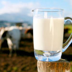 The Safety and Dangers of Raw, Unprocessed, Unpasteurized Milk