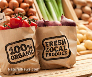 Wal-Mart to Offer Organic Products at Affordable Prices