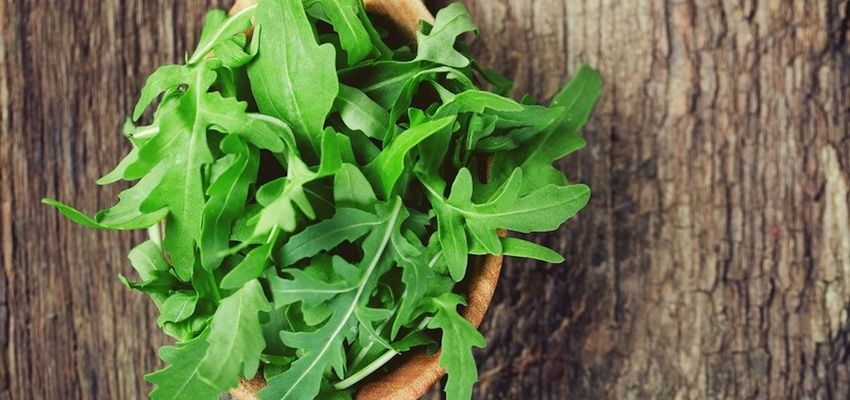 Top 3 Health Benefits Of Eating Bitter Greens