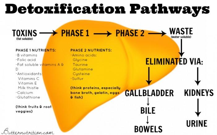 detox-pathways