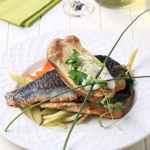 contaminated-fish-trout