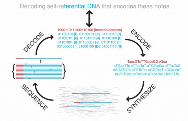 coding-decoding-dna-storage-640x413