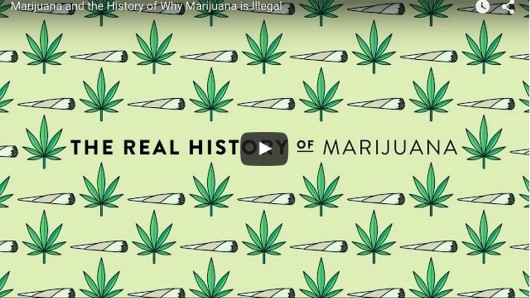 History Re-examined: Why Is Marijuana Illegal?