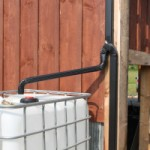 How Rainwater Collection Can Save Your Wallet
