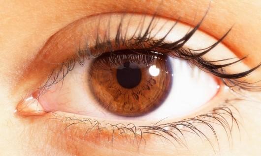 The Secrets of Eye Movement