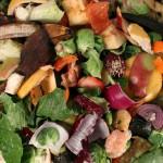 6 Feasible Ways to Help Reduce Food Waste