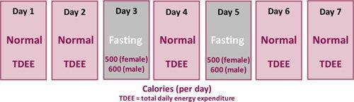 calorie-expenditure