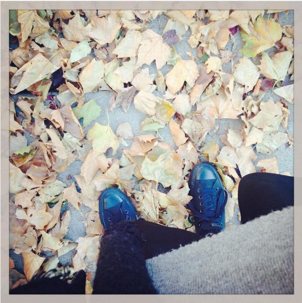 instagram.com / Via Instagram: @shoeboxchronicles