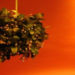 Poisonous Plants: Plants to Keep Away From Pets