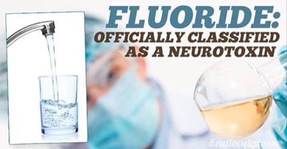 Fluoride neurotoxin