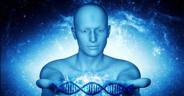 There may be a link between the meridians and energy and information relayed by DNA.