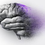 Stem Cells Driving New Brain Health Discoveries