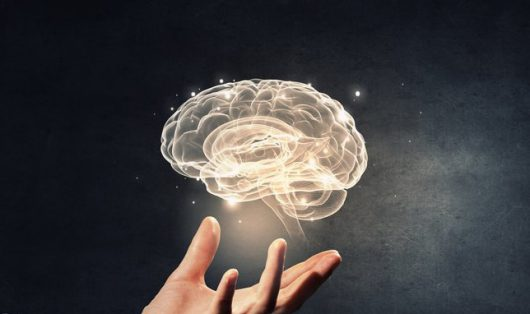 Neural Stem Cells Could Give New Lease of Life to Aged Brains