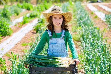 soil healthy