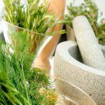 Herbal Cleanse: 8 Detoxifying Herbs