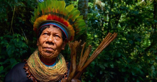 Ayahuasca Shaman in the Amazon