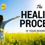 Body Tissue Regeneration Through Nutrition