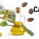 Castor Oil Benefits: 7 Powerful Home Remedies