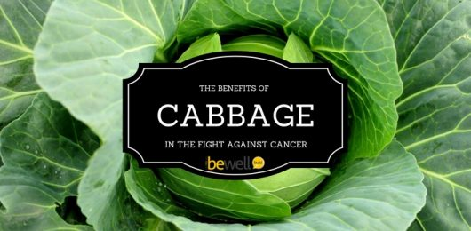 <thrive_headline click tho-post-37479 tho-test-80>The Benefits of Cabbage Against Fighting Cancer</thrive_headline>