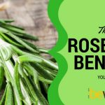 Discover Amazing Rosemary Benefits for Your Memory and Brain
