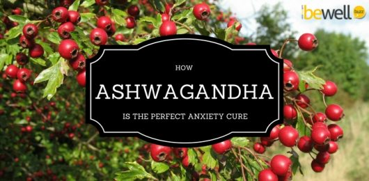 <thrive_headline click tho-post-39925 tho-test-40>How Ashwagandha Is The Perfect Anxiety Cure</thrive_headline>