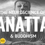 The Neuroscience of Anatta & Buddhism