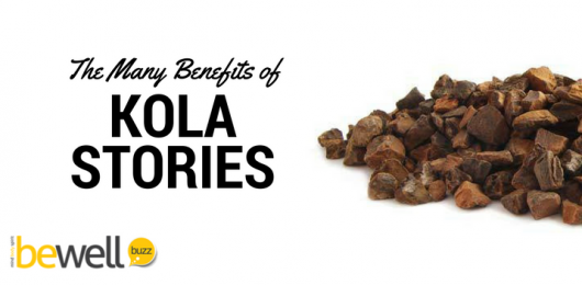 <thrive_headline click tho-post-42375 tho-test-27>The 7 Amazing Ways Kola Nut Benefits the Body</thrive_headline>