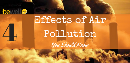 <thrive_headline click tho-post-43586 tho-test-174>The 4 Effects of Air Pollution That You Need to Know</thrive_headline>