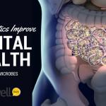 Psychobiotics Improve Mental Health Via Gut Microbes