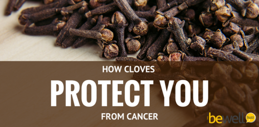 <thrive_headline click tho-post-44543 tho-test-242>How Cloves Protect You from Skin Cancer</thrive_headline>