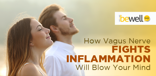 How Vagus Nerve Fights Inflammation Will Blow Your Mind