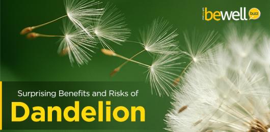 6 Surprising Benefits and Risks of Dandelion