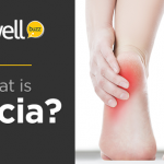 Understanding Fascia – Biological Fabric That Holds Us Together