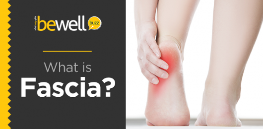 What is Fascia and How Can You Take Care of it
