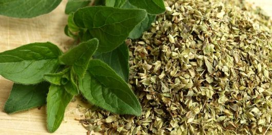 Oregano Oil: The Rumors Are True