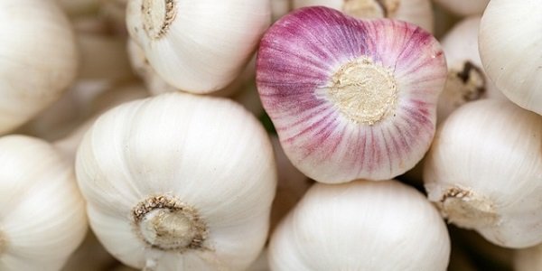 Natural way to clean arteries: Garlic