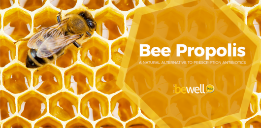 <thrive_headline click tho-post-51596 tho-test-575>Bee Propolis: A Natural Alternative To Antibiotics</thrive_headline>