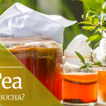 Jun Tea – The New Gut-Healing Drink That Is About To Be Everywhere