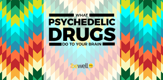 A Scientific Look at What Psychedelics Do in The Brain