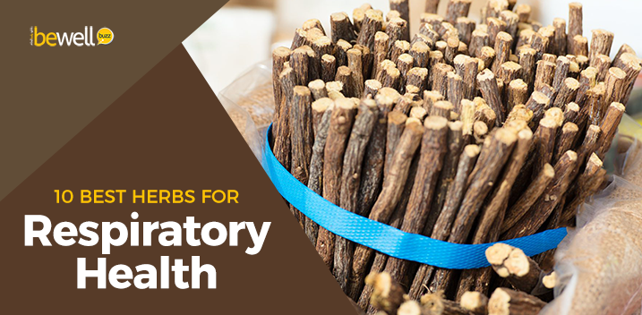 10 Best Herbs for Respiratory Health & How They Help You