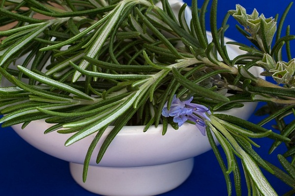 Rosemary essential oil stimulates hair growth when applied to the scalp.