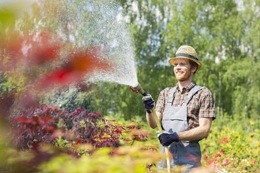 Exposition aux toxines- les pesticides, les métaux lourds et d&#39;autres produits chimiques augmentent le risque de développer la maladie de Parkinson. &quot;width =&quot; 525 &quot;height =&quot; 350 &quot;/&gt; </p> <p> <span style=