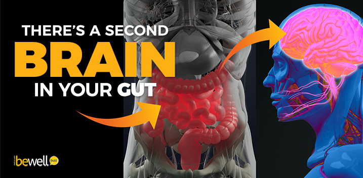 The Importance of The Gut-Brain Connection