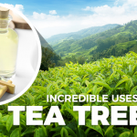 8 Everyday Uses for Tea Tree Oil That Will Surprise You