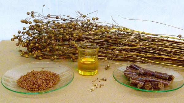Les graines de lin moulues sont plus faciles à digérer et ont une plus grande biodisponibilité que les graines de lin entières. &quot;Width =&quot; 600 &quot;height = &quot;337&quot; /&gt; </p> <p> <span style=
