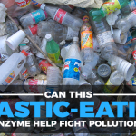 This Plastic-Eating Enzyme Can End Plastic Pollution Crisis