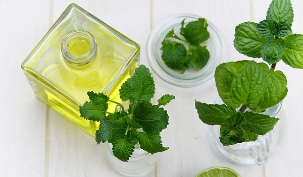Its refreshing smell, cooling sensation, and relaxing effect on the body make peppermint oil a must in every household.