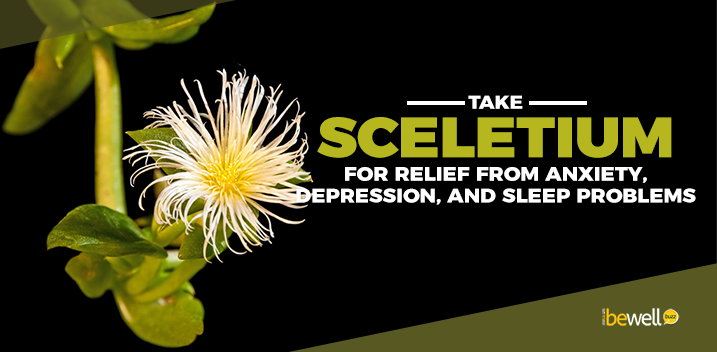 Take Sceletium for Relief from Anxiety, Depression, and Sleep Problems