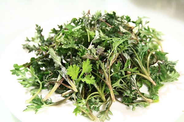 Wormwood is a proven natural remedy for treating intestinal parasites.